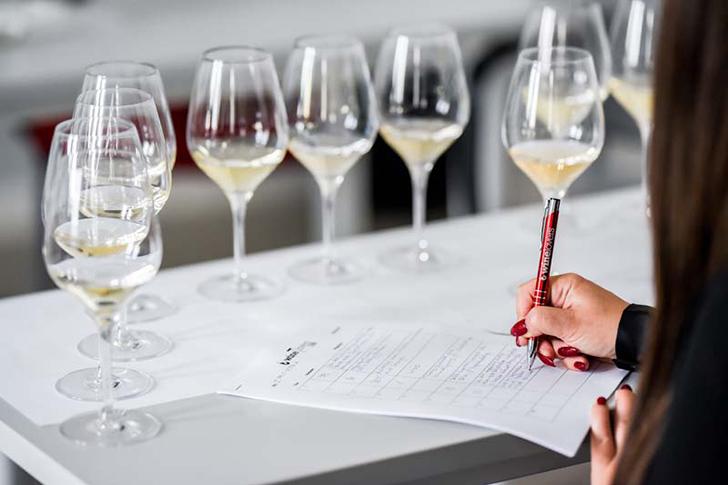 """""""Szeretném, ha a magyar bor ki tudná használni a benne rejlő lehetőségeket"""""""