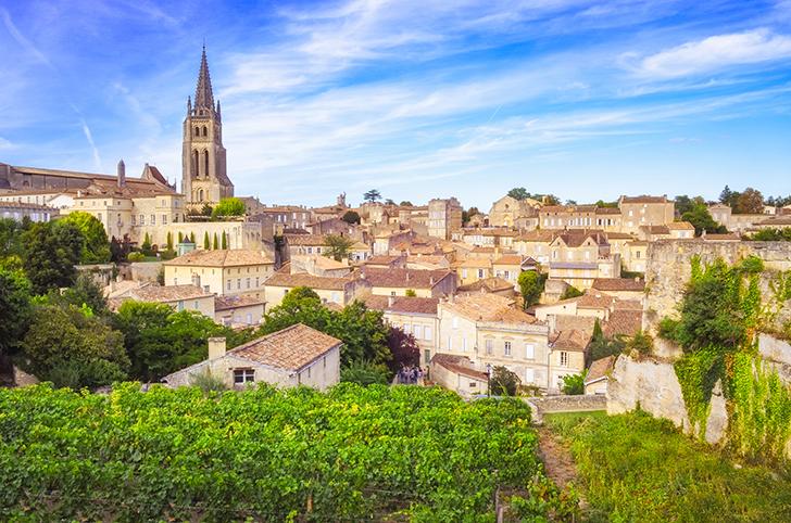 Pach János: Bordeaux-i és villányi stílusgyakorlat