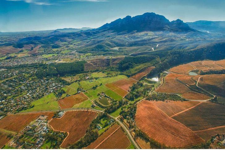 Az egyik legfontosabb újvilági bortermelő ország: Dél-Afrika