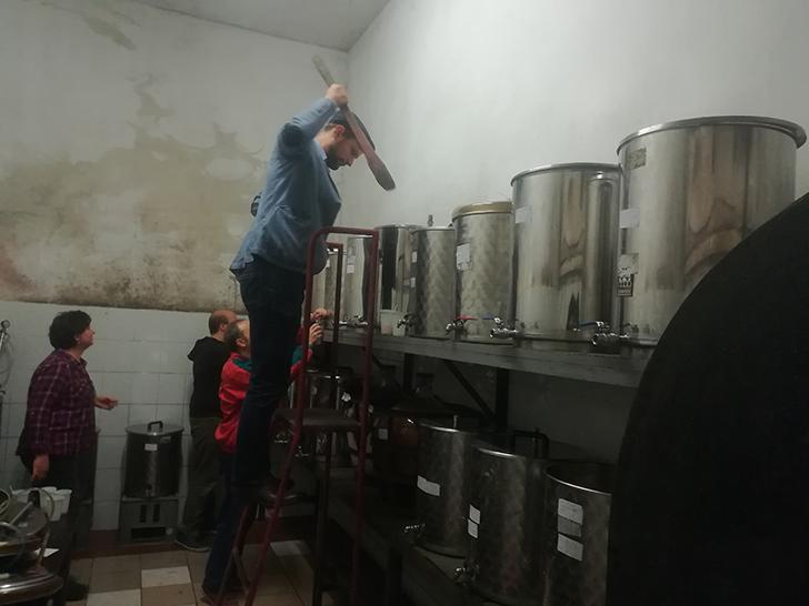 Így lesz valaki egy év alatt végzett borász #4