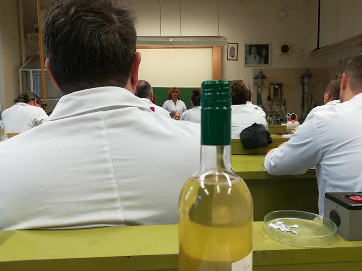 Így lesz valaki egy év alatt végzett borász #13