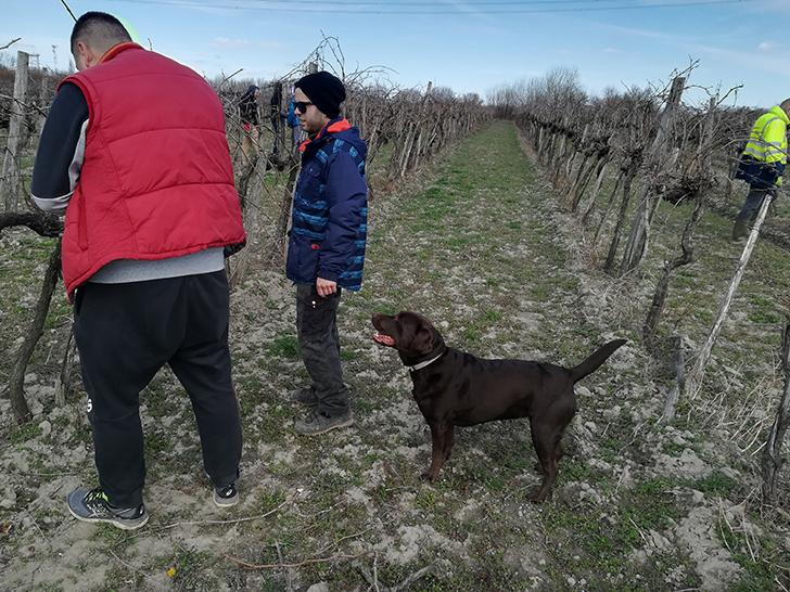 Így lesz valaki egy év alatt végzett borász #23 - az (egyelőre) utolsó poszt