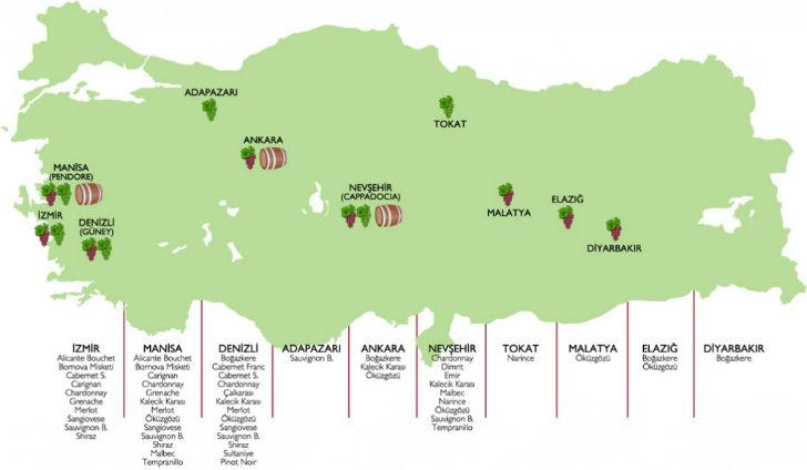 A nehézségek ellenére virágzik Törökország borászata