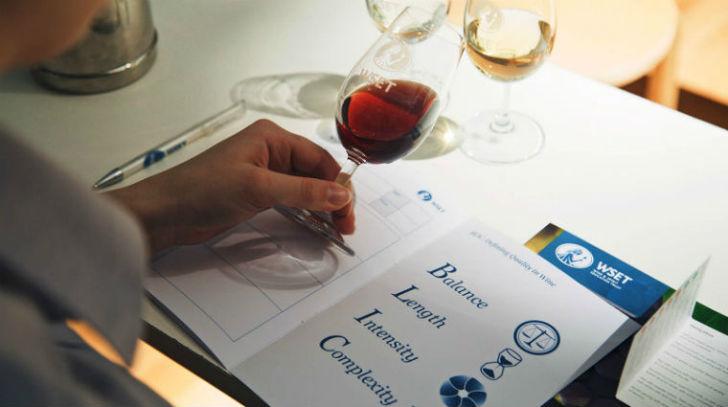 Így lettem nemzetközi borakadémikus