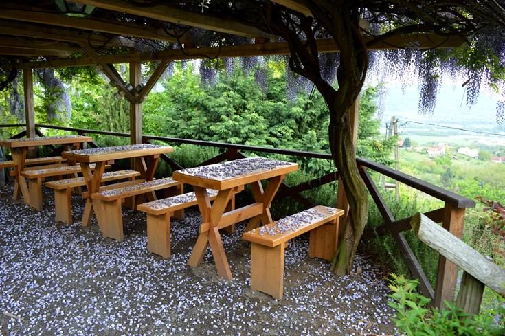 A badacsony egyik legszebb kilátása, a lila akácos terasz