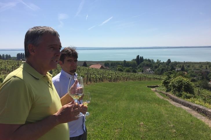 Magyarország kedvenc borászata?