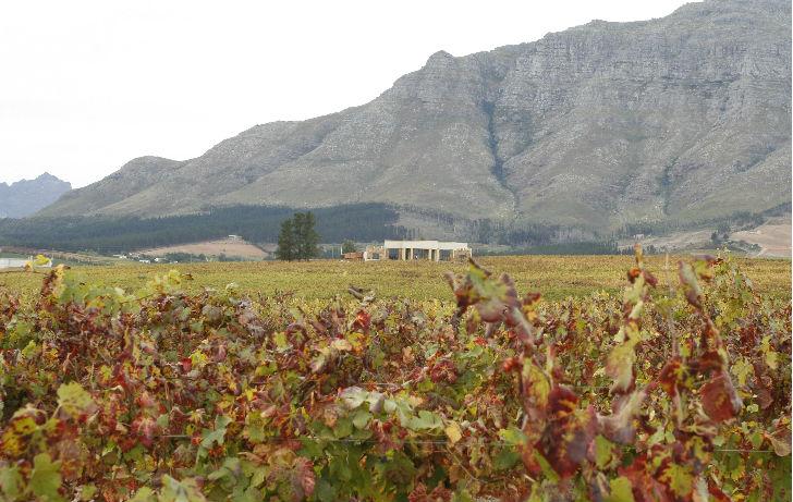 Több mint 300 éves a dél-afrikai pince