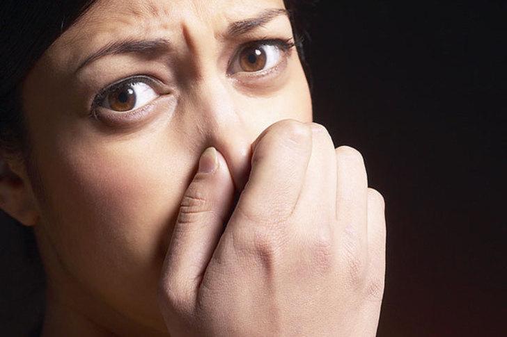 Ha öregszik a nyelv, az orr, a szem