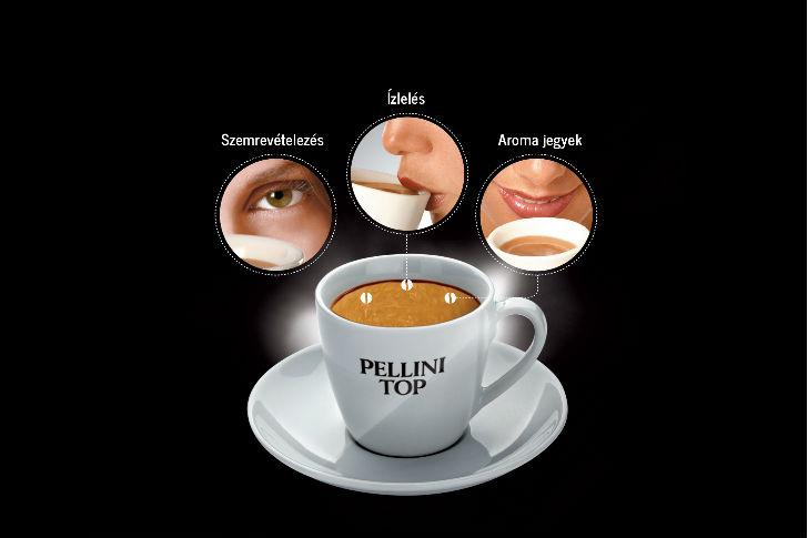 A kávékóstolás kulcsa is az illatokra, ízekre való emlékezés