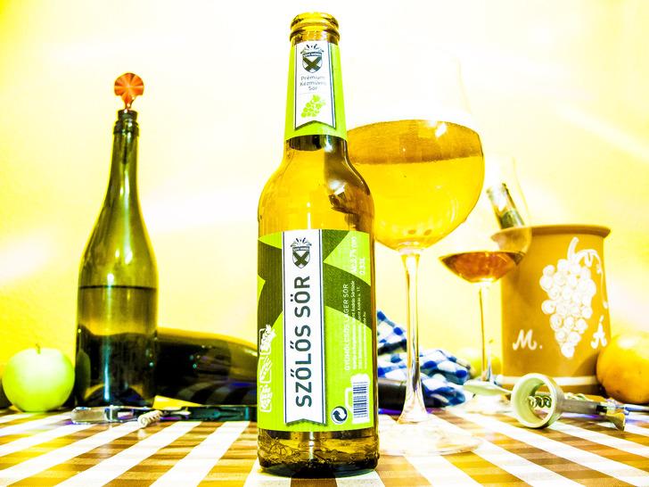 Tokaj szőlővesszein… sör?