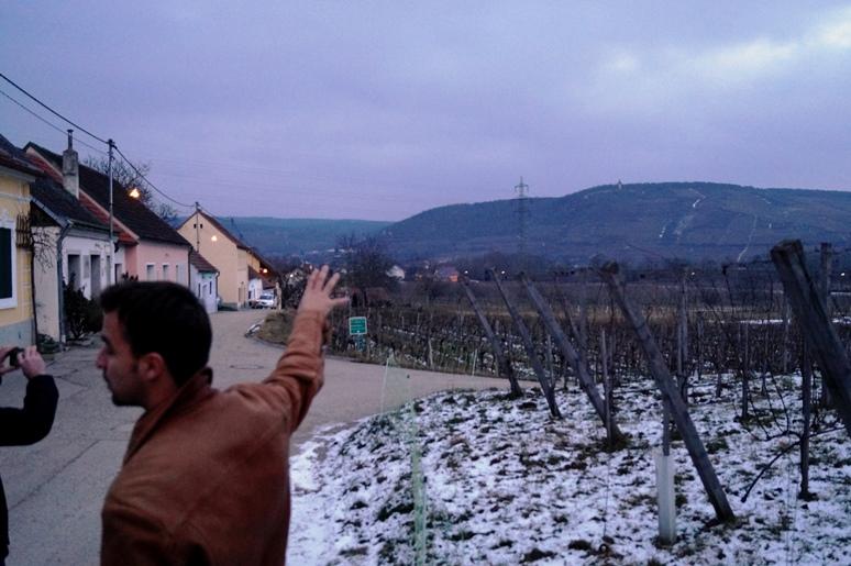 Kocka borászatok és lekerekített savak Ausztriában