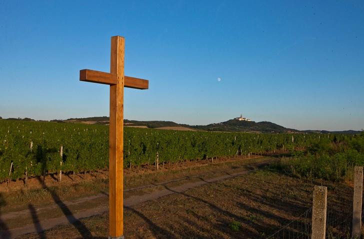 Milyen bort isznak a papok?
