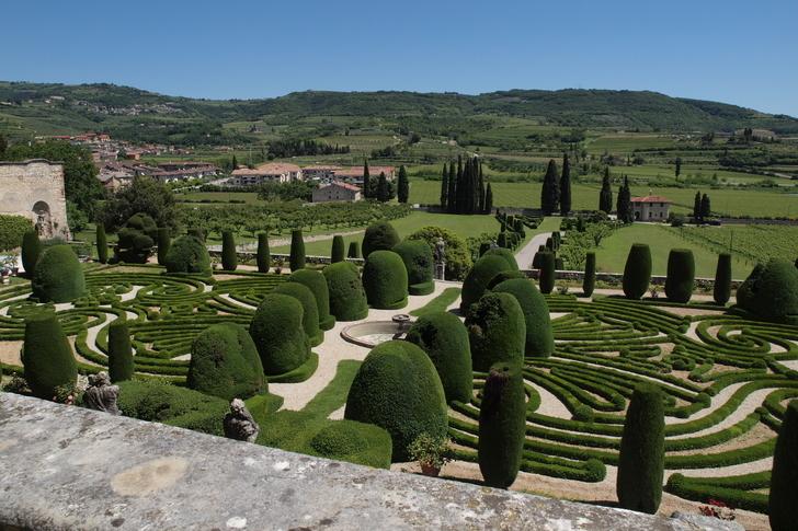 Bor, olíva, palota, kert: Valpolicellában jártam